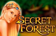 http://99vulcanpobeda.com/secret-forest/